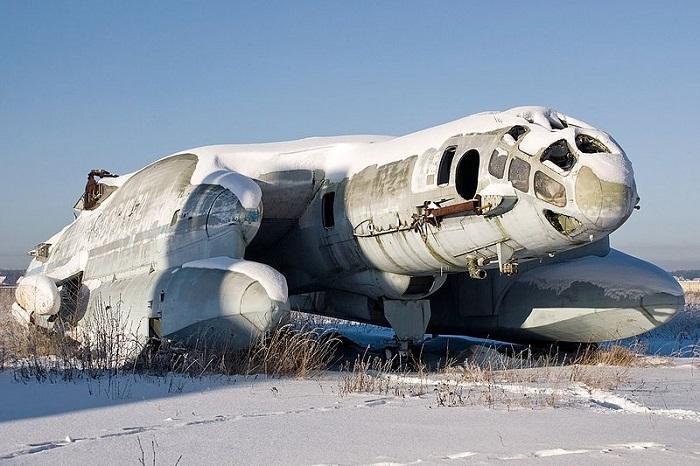 bartini beriev aeronaves